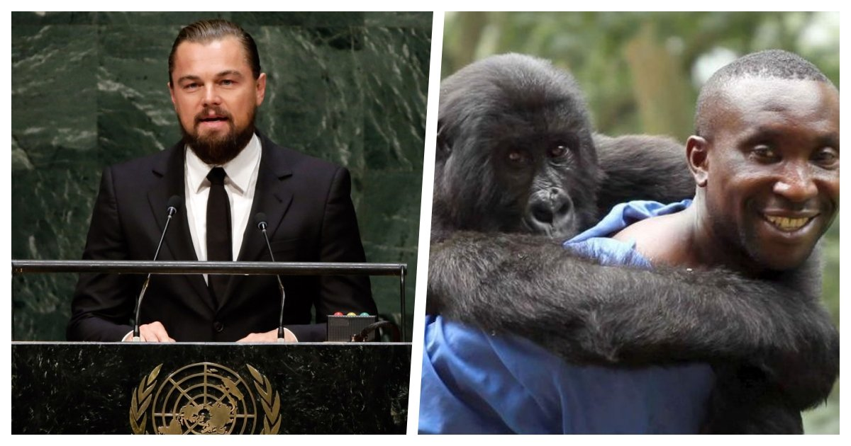 collage 43.jpg?resize=412,275 - Leonardo DiCaprio Joins Efforts To Support One of the Most Important Nature Reserves in Africa