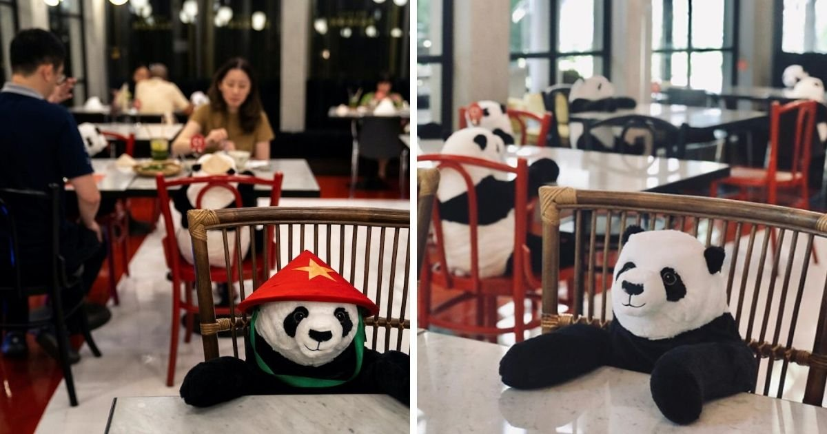 cover 5.jpg?resize=1200,630 - A Restaurant Placed Sitting Panda Bears at Tables to Keep Customers Company While Social Distancing