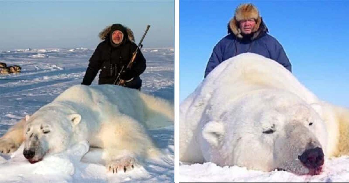 diseno sin titulo 66.jpg?resize=1200,630 - Cazadores De Trofeos Posan Con Osos Polares Muertos Para Una Compañía De Viajes De Caza
