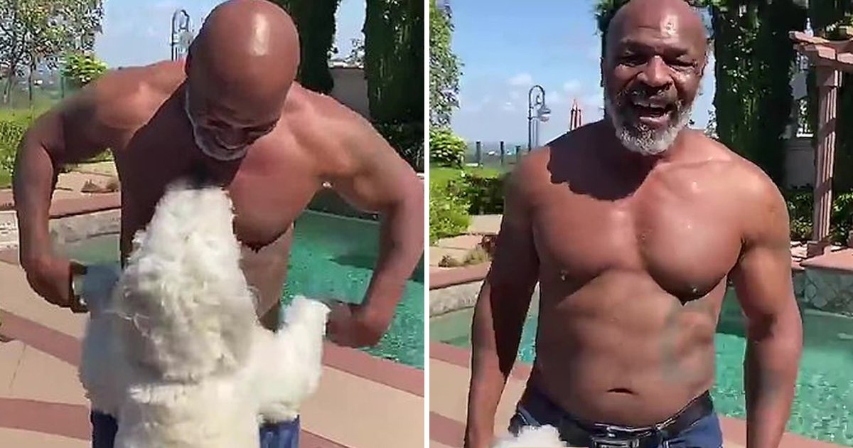 gdgsf.jpg?resize=1200,630 - Mike Tyson Shows Off His Thrilling Physique-Credits His Vegan Diet As He Prepares To Return To Boxing