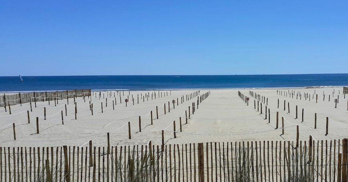 la grande motte.png?resize=1200,630 - La Grande-Motte a créé des espaces délimités sur la plage pour bronzer en toute sécurité