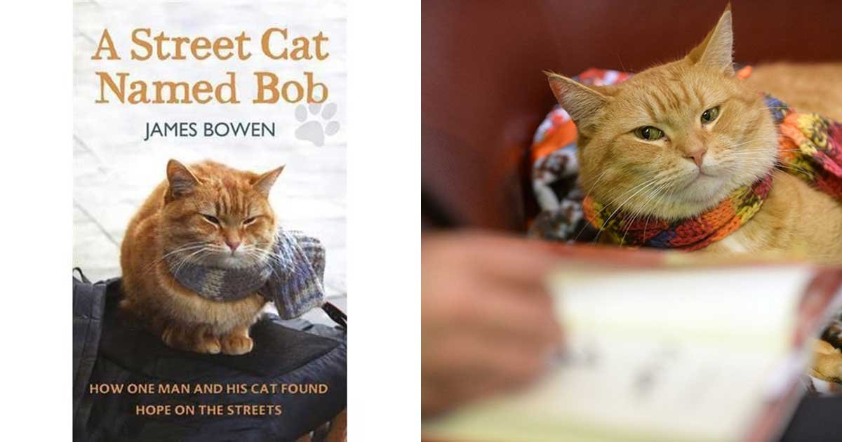 1 91.jpg?resize=1200,630 - Stray Who Inspired Street Cat Named Bob Book Series Dies At Age 14