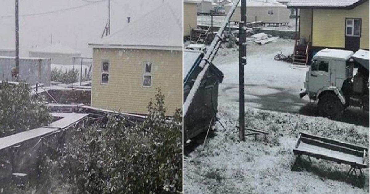 1111 2.png?resize=1200,630 - 초여름에 눈 내린다는 러시아 실시간 상황.jpg