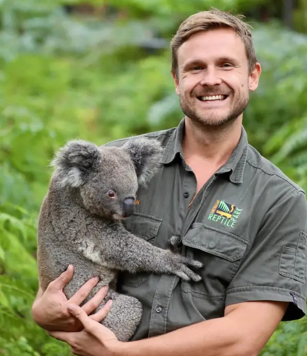 Australian Reptile Park Koala Joey Ash