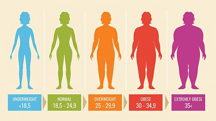 the BMI calculator details