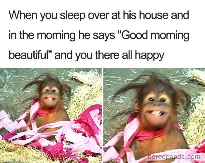 Cute-Relationship-Memes
