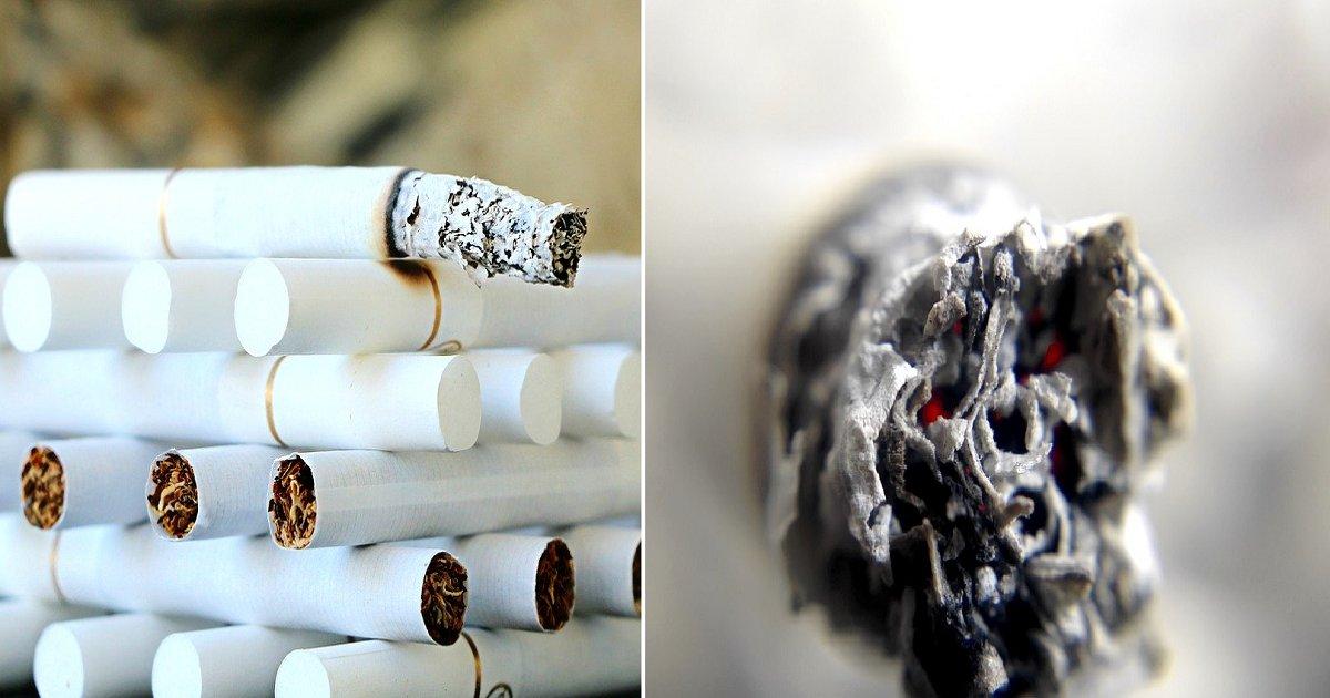 666666.png?resize=412,275 - 흡연으로 손상된 폐를 회복시키려면 '이것' 많이 먹어라