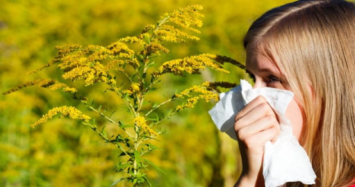allergie.jpg?resize=412,232 - Carte des pollens de graminées: cette semaine les risques d'allergies sont très élevés en France