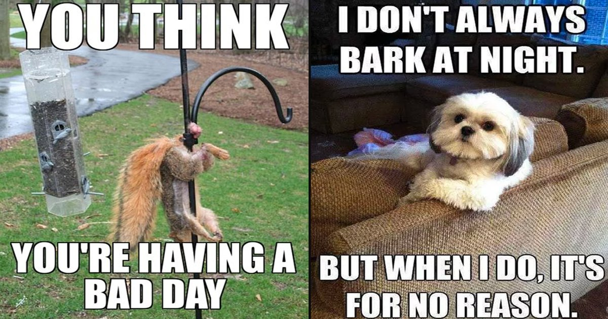 bad day memes.jpg?resize=1200,630 - Hilarious Bad Day Meme Collection That's Sure To Make You Smile