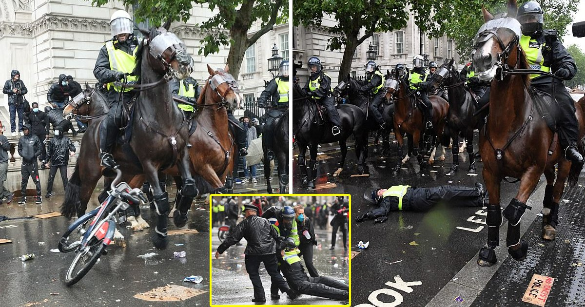 black lives 1.jpg?resize=1200,630 - Protestors Threw Bikes and Missiles at Police Horses During The Black Lives Matters