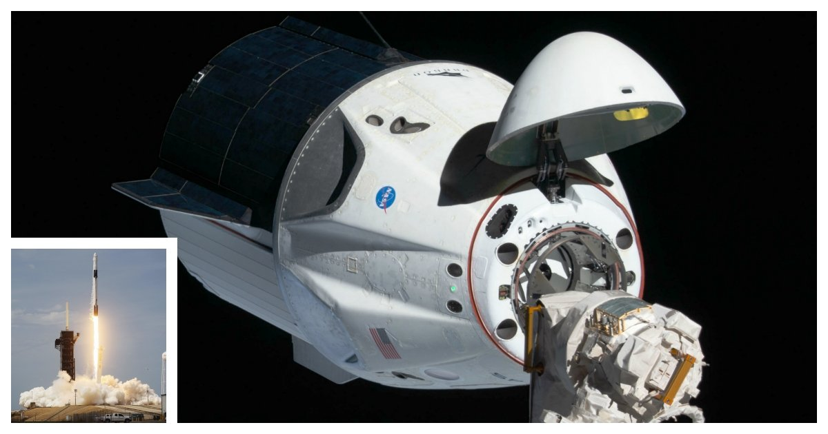 collage 1.jpg?resize=412,275 - SpaceX's Crew Dragon Successfully Docks With the International Space Station