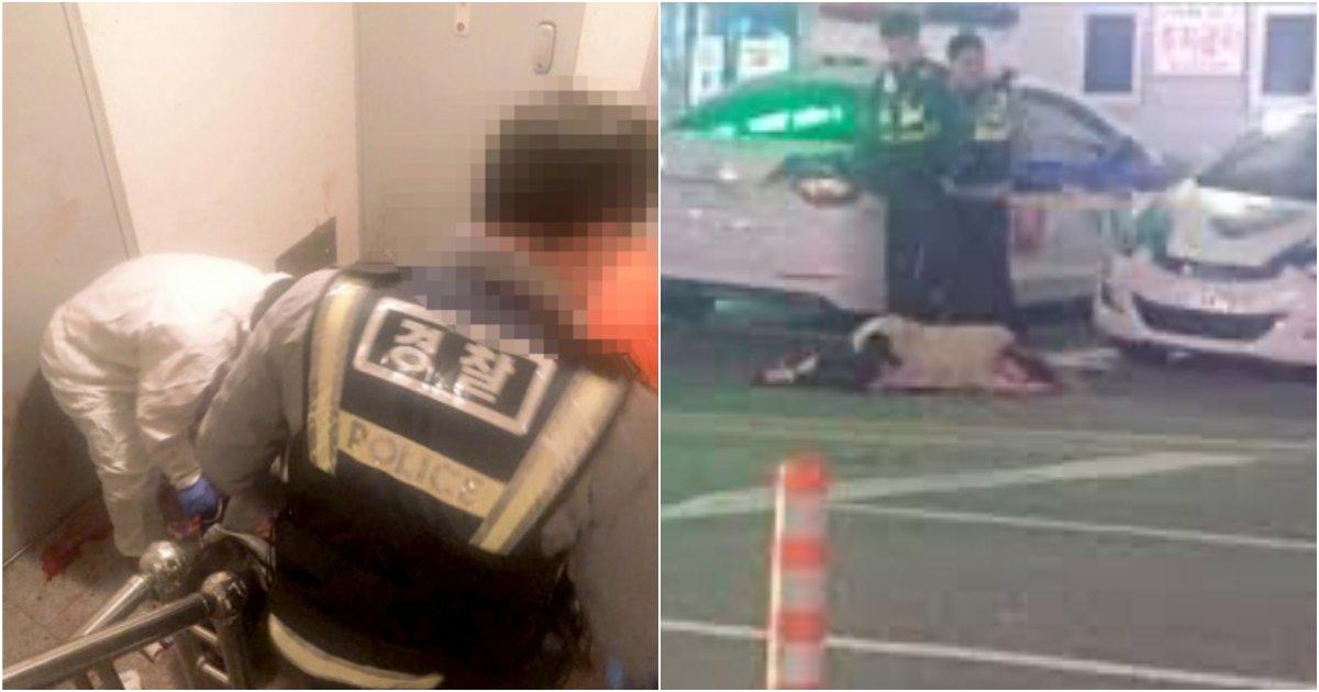 """collage 127.png?resize=1200,630 - """"최선을 다했습니다"""" 대전에서 20대 여성이 흉기를 들고 난동을 피우자 경찰이 출동해서 한 '충격적인' 행동"""
