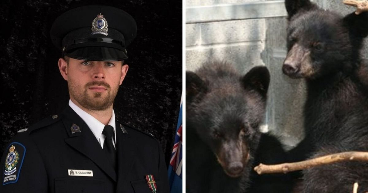 cover 10.jpg?resize=1200,630 - Conservation Officer Fired From Refusing The Order To Execute Bear Cubs Wins Legal Battle