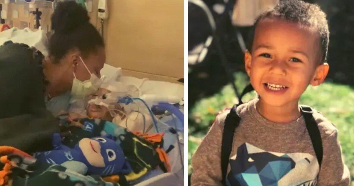 diseno sin titulo 134.png?resize=1200,630 - Fallece Niño De 4 Años De Gripe Porque Su Madre Decidió Seguir Los Consejos De Un Grupo Antivacunas