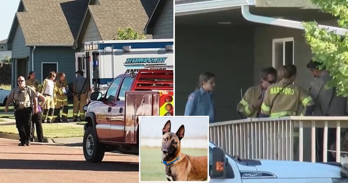 doggy.png?resize=1200,630 - 6-Week-Old Baby Boy Was Attacked By Family Dog In South Dakota