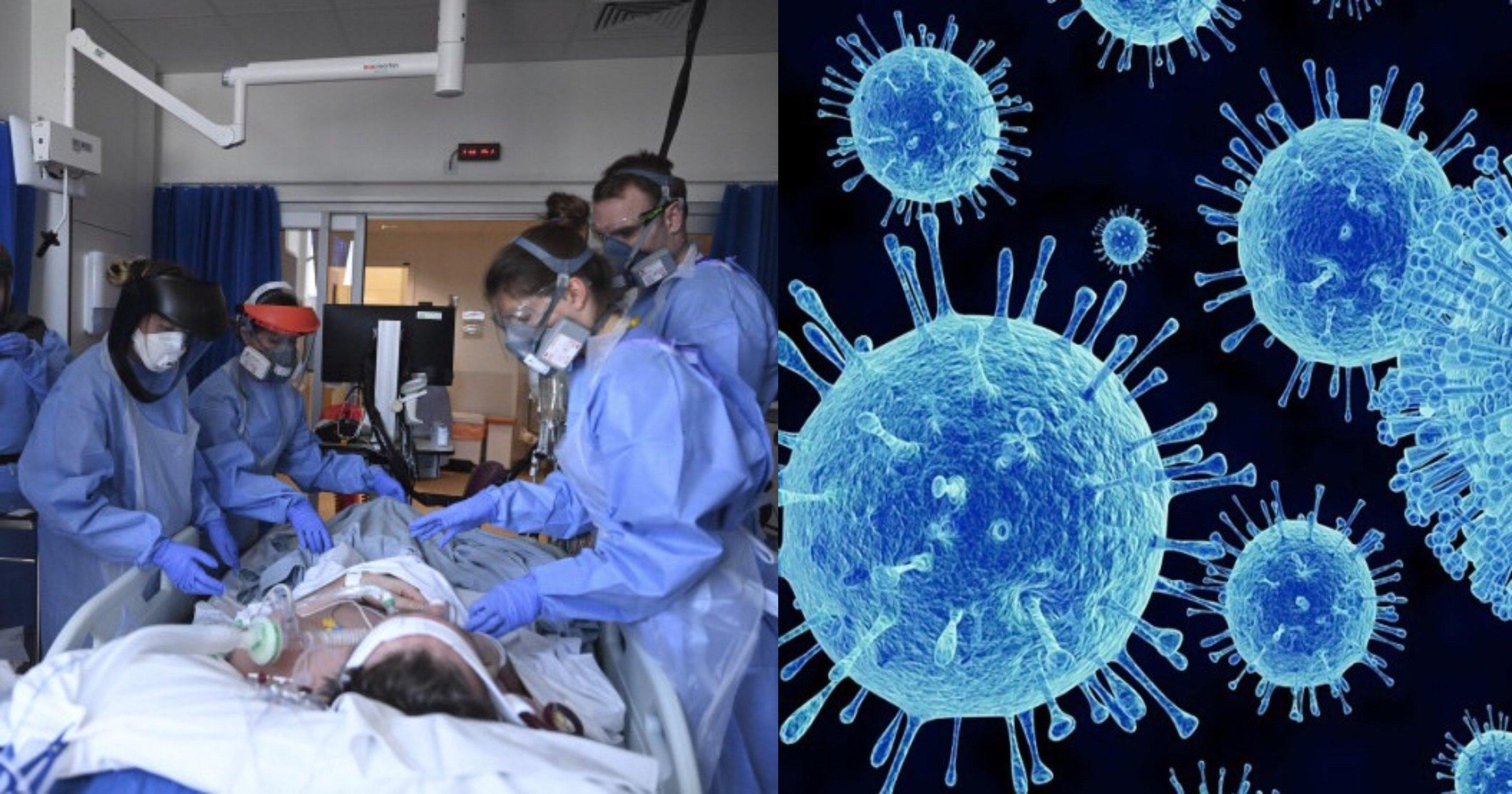 """fce725e4 f498 4a69 bdff bac62d1c5a35.jpg?resize=1200,630 - """"헐 또 다른 바이러스...?""""...새롭게 발견 된 사람에게도 전염시키는 새로운 '바이러스'의 정체"""