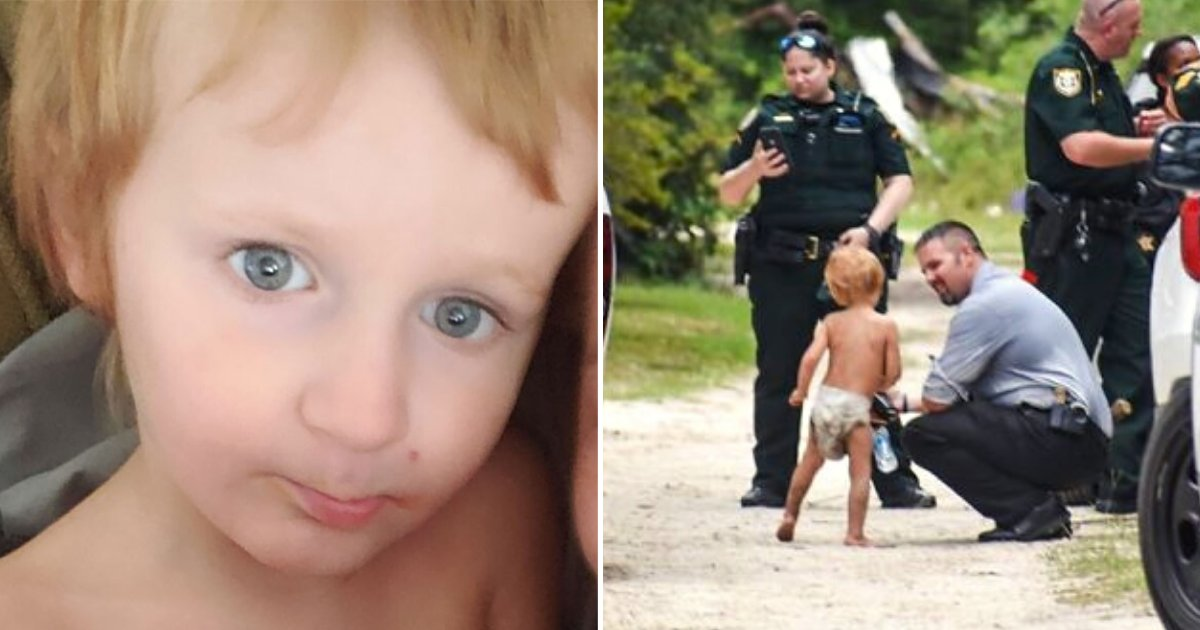 marshal6.png?resize=1200,630 - Missing Toddler With Autism Was Found In The Care Of Two Protective And Loving Dogs