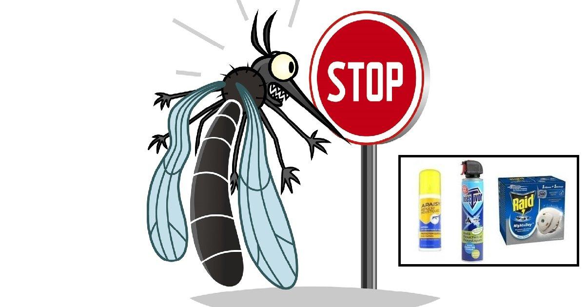 moustique2.jpg?resize=412,232 - Découvrez le 3 meilleurs produits anti-moustiques pour passer un été en tout sérénité