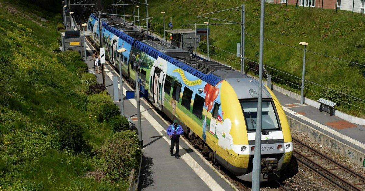 sncf.jpg?resize=412,232 - SNCF: cet été, les jeunes auront accès aux TER en illimité et à petit prix