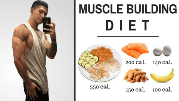calorie calculator for bodybuilding