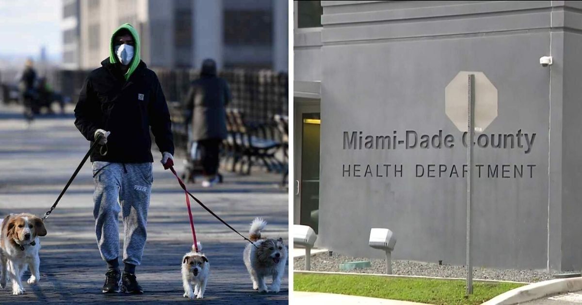 6 43.jpg?resize=1200,630 - Miami-Dade County Could Fine Residents Up to $100 If They Fail To Wear Mask In Public