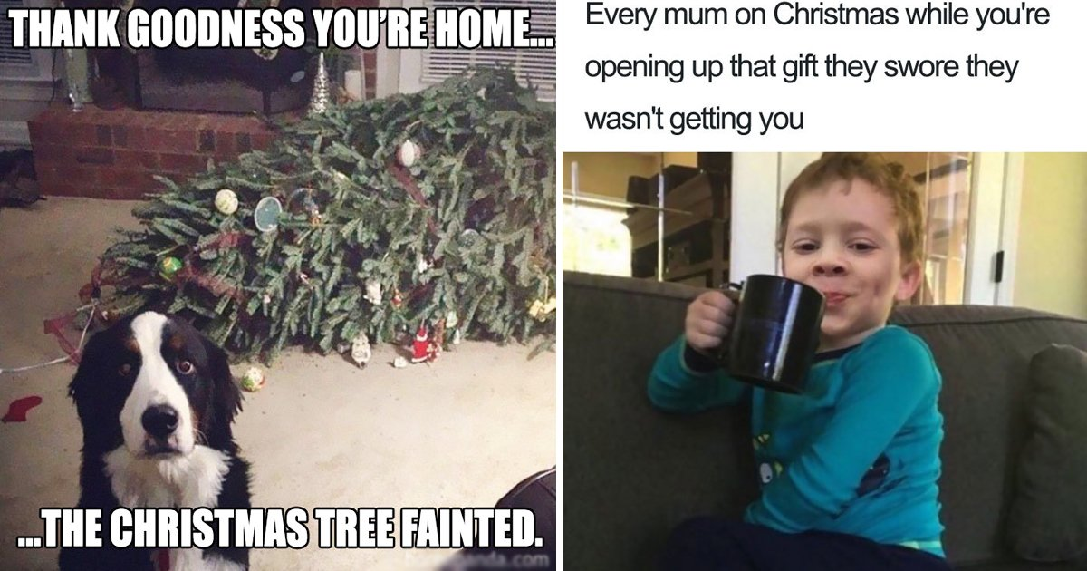 christmas memes.jpg?resize=412,232 - 9 Christmas Funny Memes You Won't Help Yourself Sharing With Family