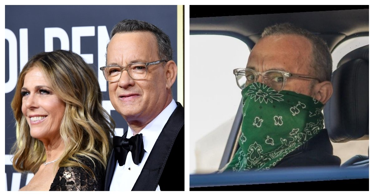 "collage 4.jpg?resize=1200,630 - ""Shame on You"" - Tom Hanks Urges Everyone to Wear A Mask"