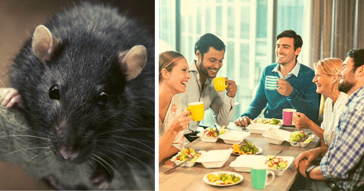 diseno sin titulo 5.png?resize=412,232 - Puso Veneno Para Ratas En La Comida De Sus Compañeros De Trabajo Como Venganza Por Ser Acosado