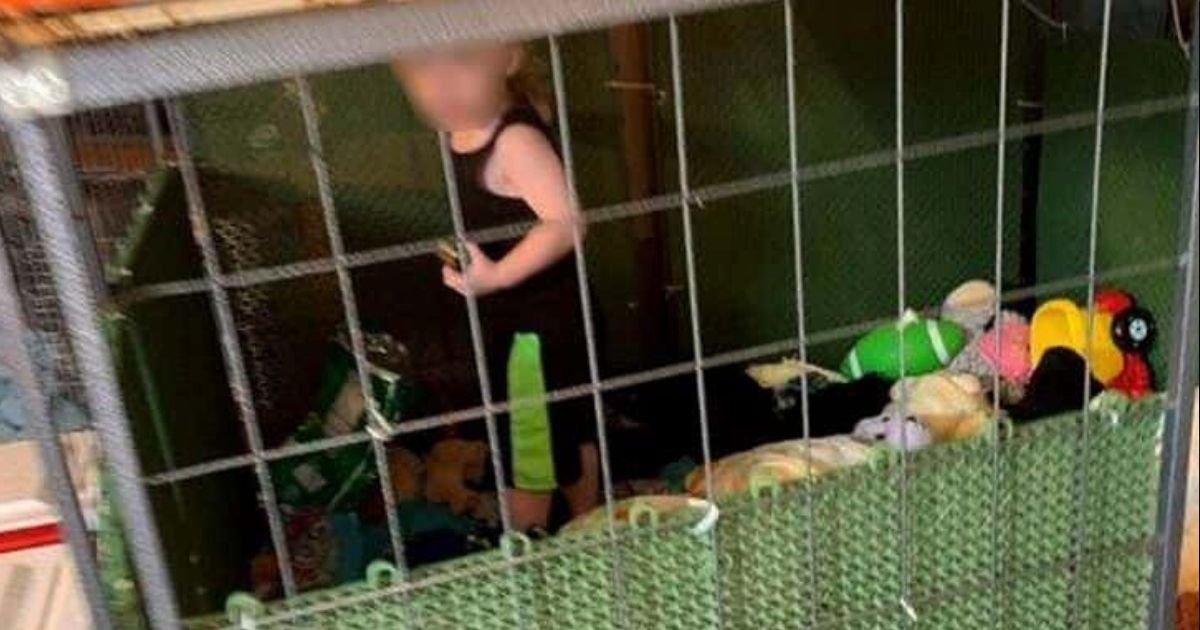 diseno sin titulo 62.jpg?resize=1200,630 - Niño De 1 Año Fue Encontrado Dentro De Una Jaula Cubierta De Heces Durante Una Operación De Rescate De Animales