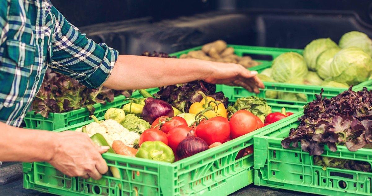 foodbank.jpg?resize=412,232 - Aide sociale: quels foyers pourront bénéficier des chèques alimentaires ?