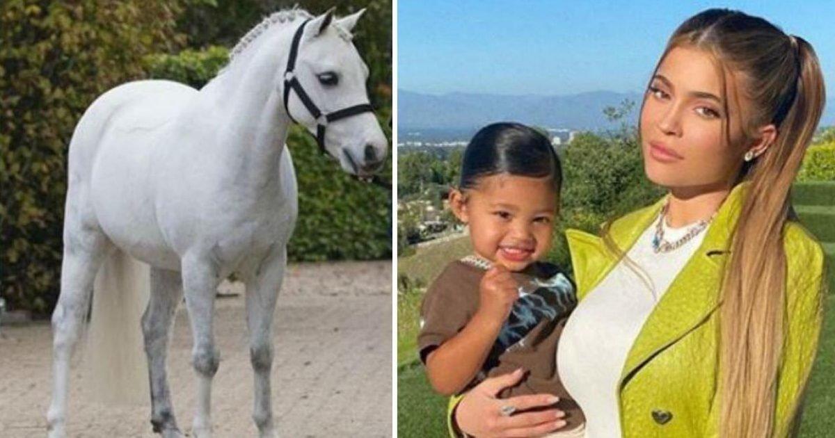 instagram stal wilten kylie jenner pony stormi 1120 e1596048837117.jpg?resize=1200,630 - Kylie Jenner a acheté un poney à 200 000 dollars pour sa fille Stormi, âgée de deux ans