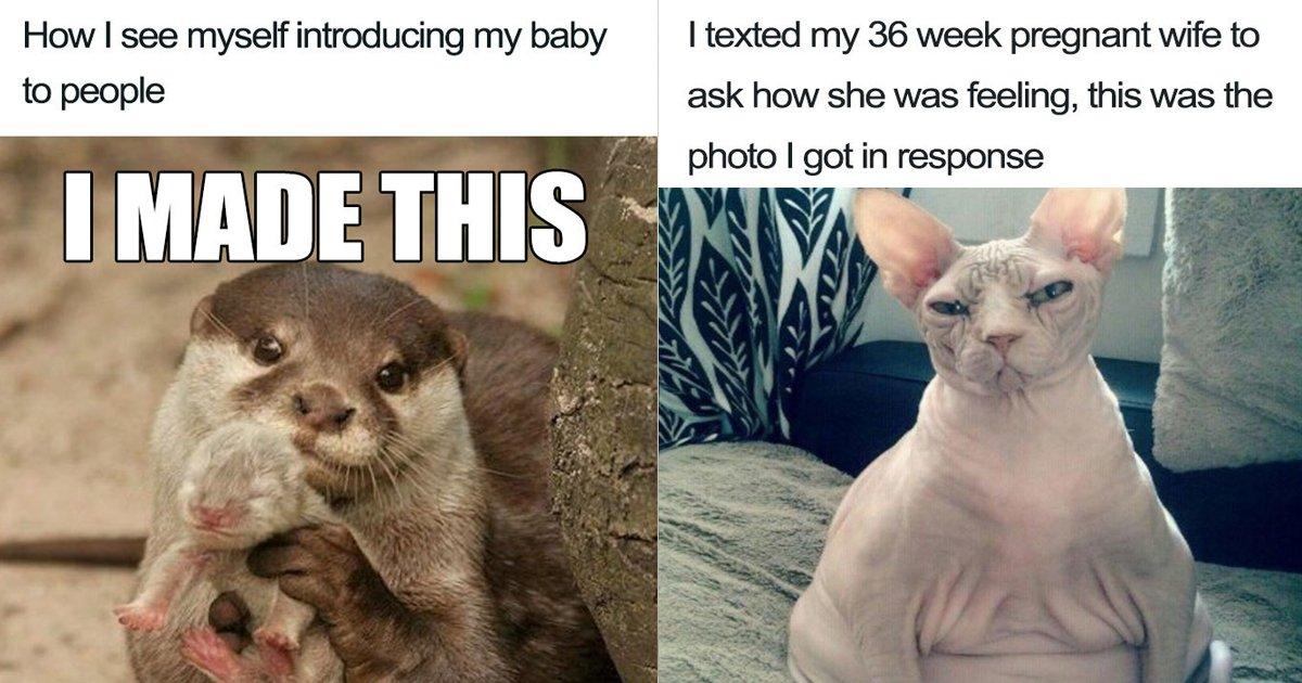 pregnancy memes.jpg?resize=1200,630 - 10 Hilarious Pregnancy Memes You'd Laugh Your Head Off