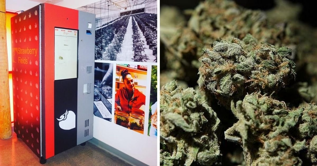 1 162.jpg?resize=1200,630 - Cannabis Vending Machines Are Coming To The US Next Month