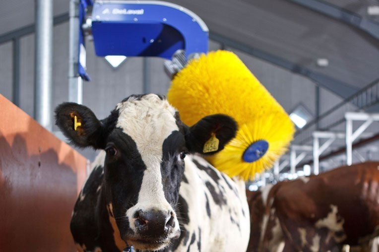 We make sustainable food production possible - DeLaval