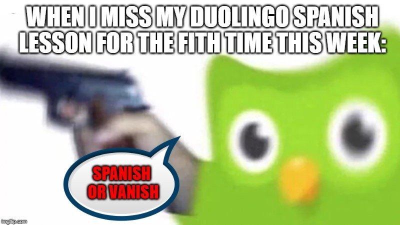 Duolingo memes