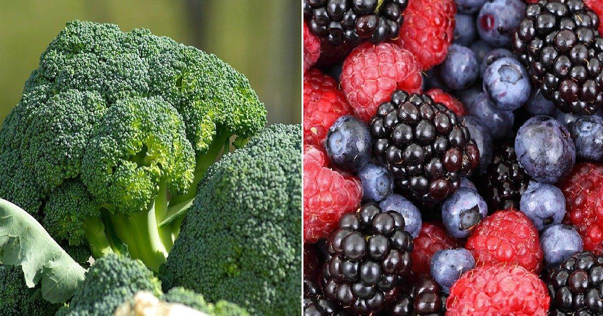 33333 5.png?resize=1200,630 - 하버드대가 밝힌 뇌 건강에 좋은 식품 5가지