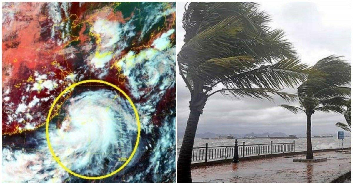 """9 8.jpg?resize=1200,630 - """"진짜 우리나라 큰일났다""""... 실시간으로 변경된 태풍 바비의 경로와 '충격적인' 크기.jpg"""