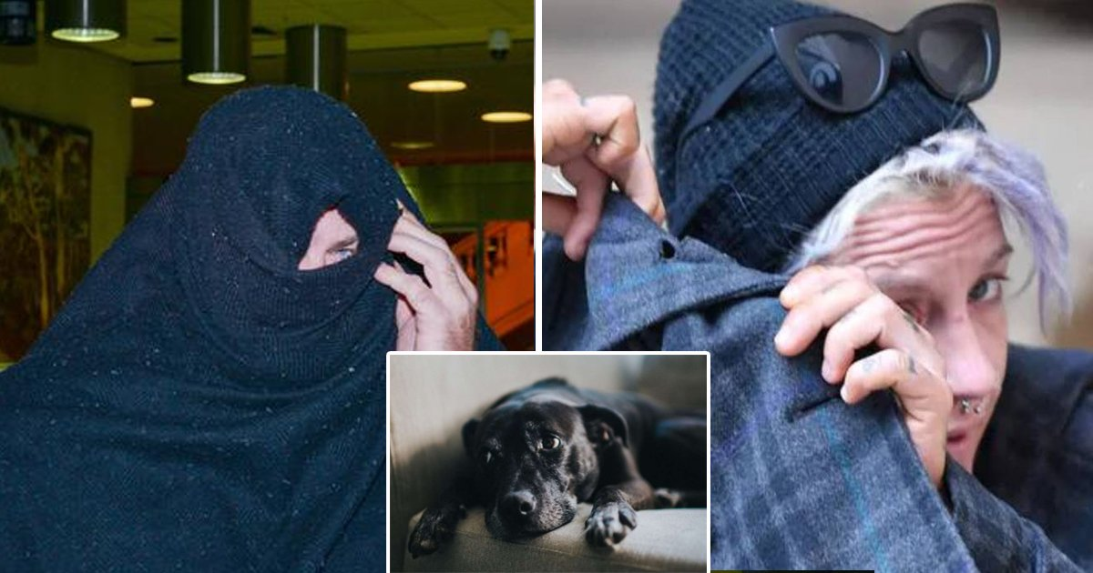 dog 1.jpg?resize=1200,630 - Former Couple Sentenced For Filming Sexual Encounters With Pet Dog