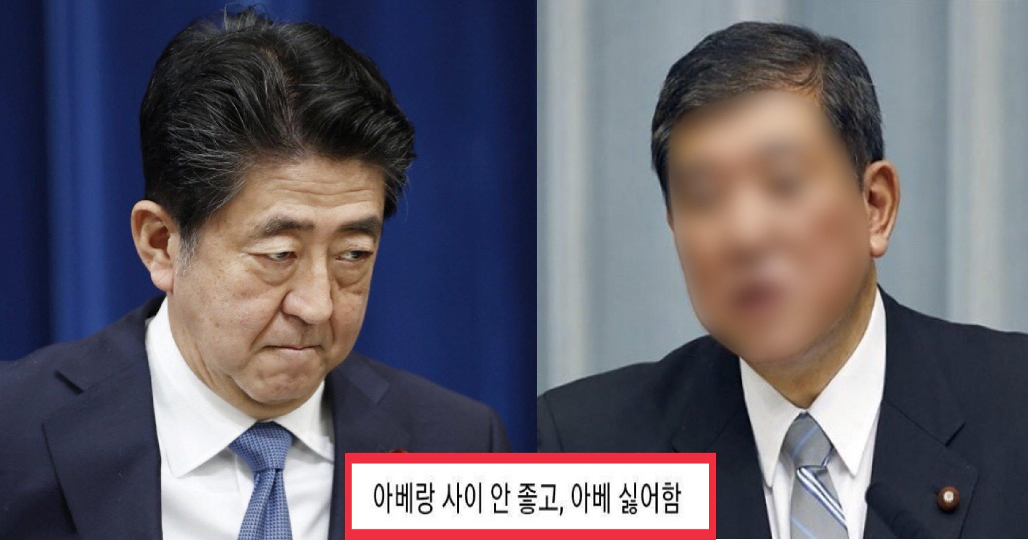 """e02e2bcb 566d 463b 8676 c1151f786f59.jpeg?resize=1200,630 - """"전 아베 싫어해요""""....사퇴한 아베 뒤를 이을 일본 새 총리 선호도 1위의 정체"""