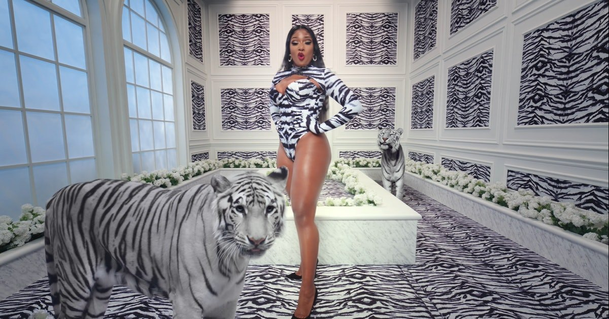 ec8db8eb84ac 3 26.jpg?resize=1200,630 - Megan Thee Stallion Confesses Being Shot By Ex Tory Lanez And Gets Celebrity Support