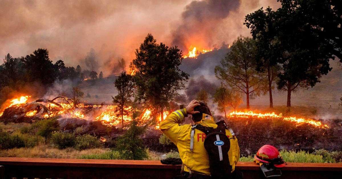 fox.jpg?resize=1200,630 - California Firefighter's Bank Account Emptied As He Fought Massive Blaze