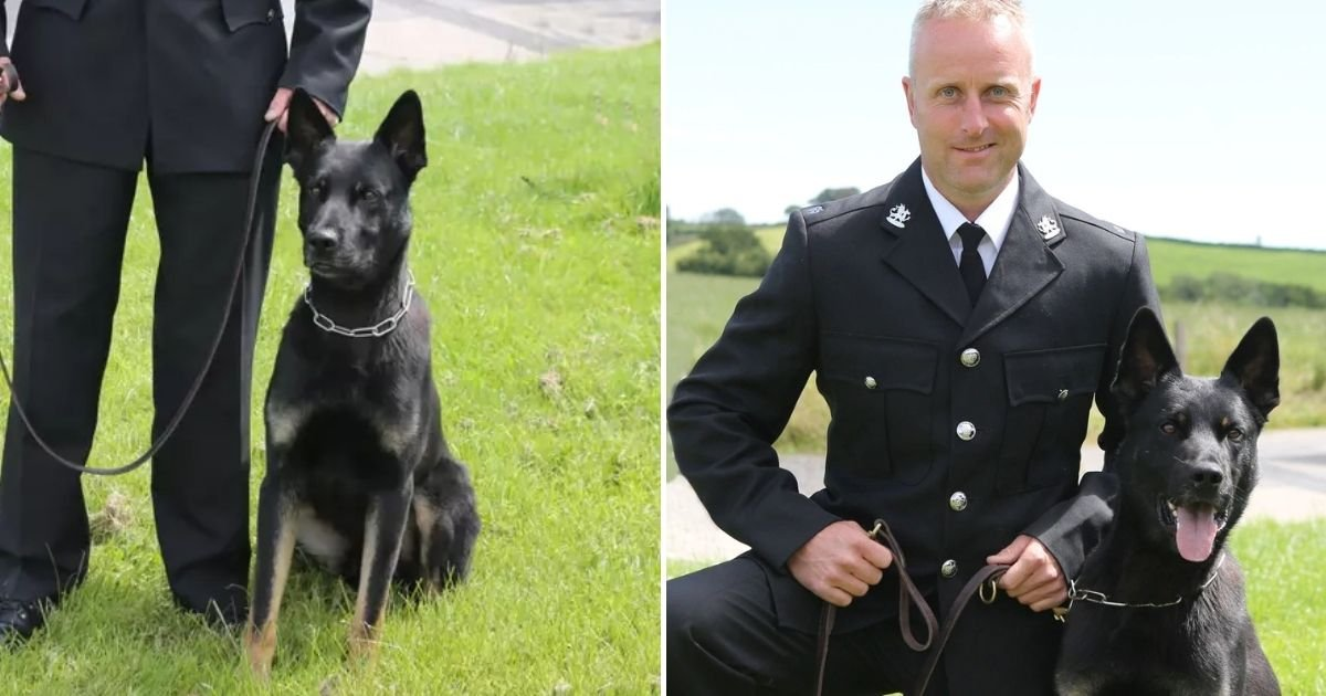 max4.jpg?resize=412,232 - Police Dog Finds Missing 1-Year-Old Baby And Mother On His First Day Of Work
