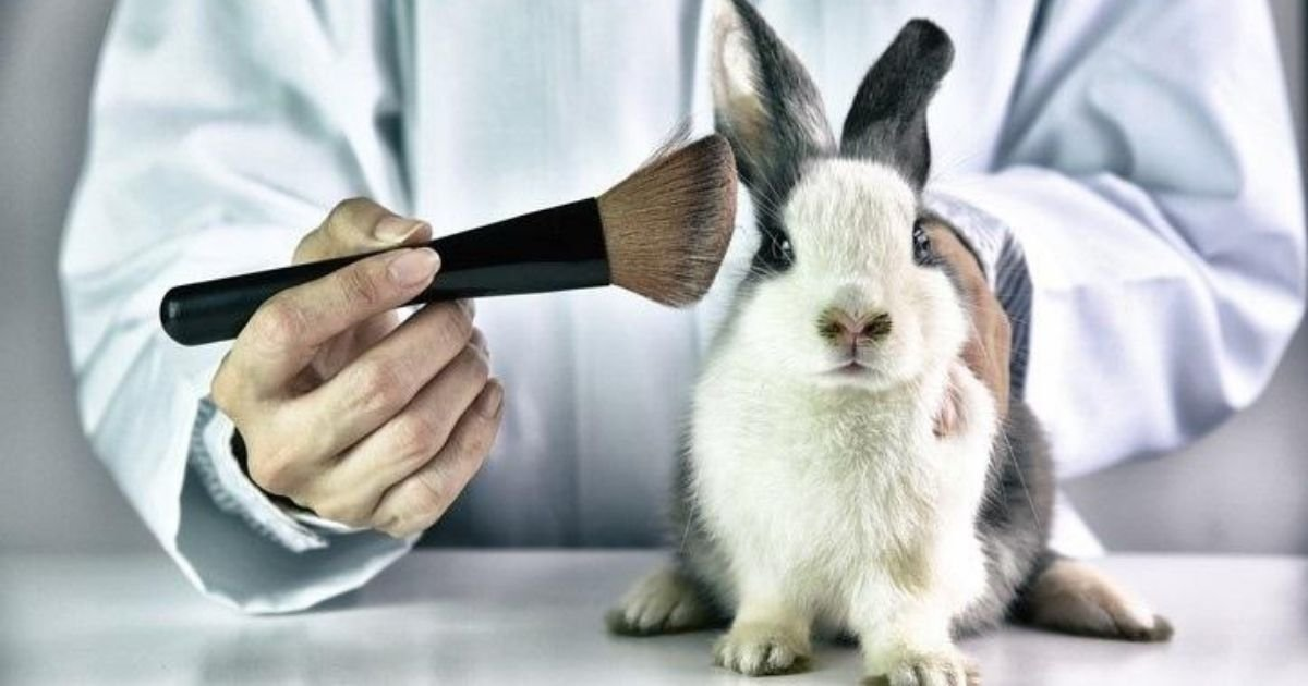 untitled design 40.jpg?resize=1200,630 - Officials Rule Chemicals Used In Beauty Products Must Be Tested On Animals