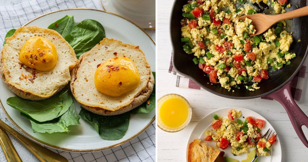 vegan eggs.jpg?resize=1200,630 - Vegan Eggs Exist And They're As Close As It Gets To The Real Deal