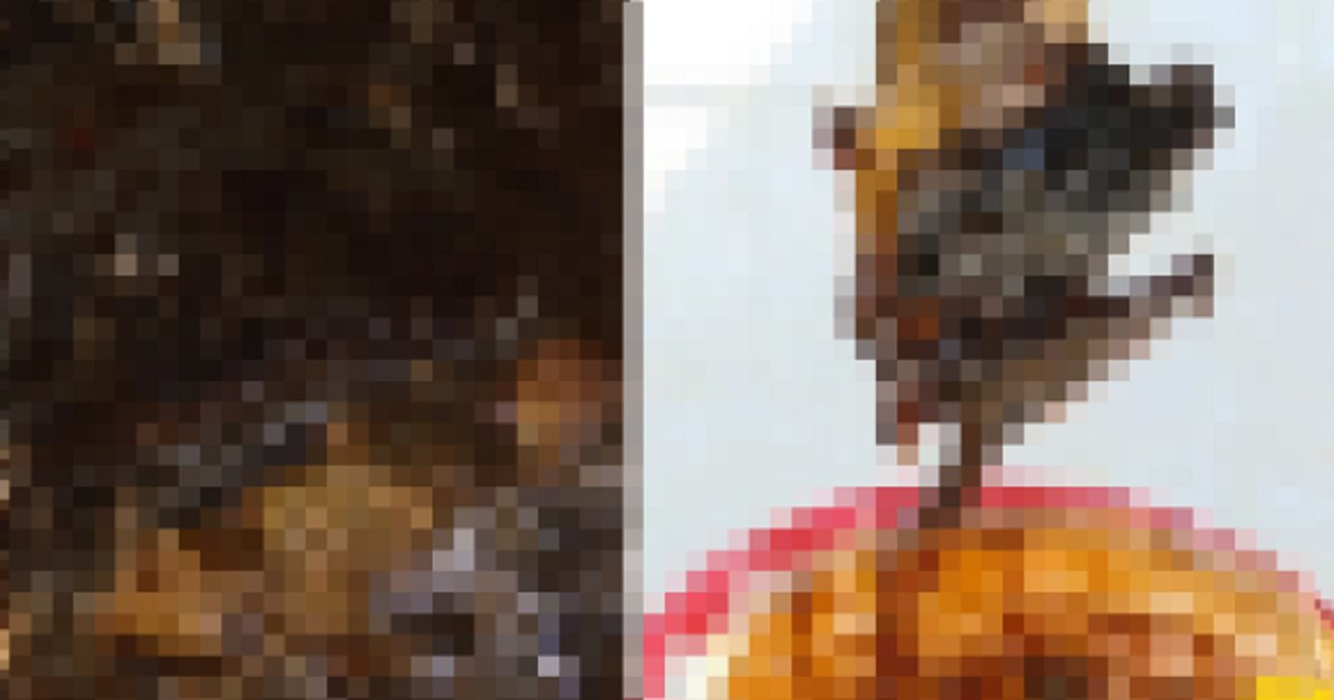00.png?resize=412,232 - 유명 굴 소스에서 OO 사체가 발견됐다