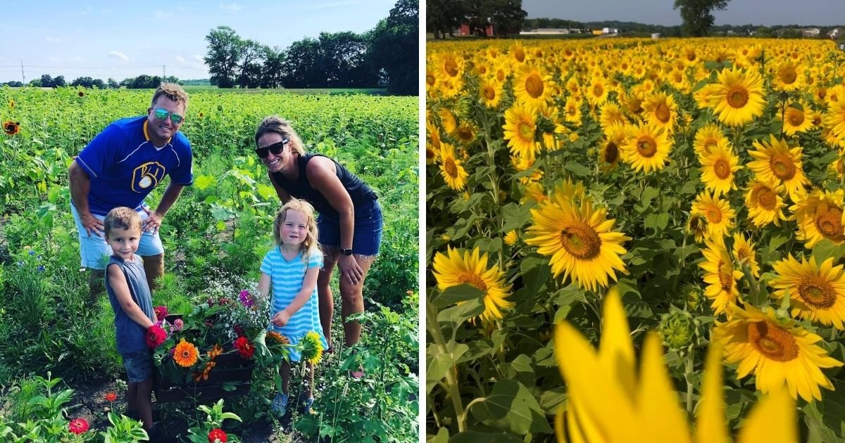 1 116.jpg?resize=1200,630 - Farmer Plants More Than 2 Million Sunflowers To Help Make People Happy During The Pandemic