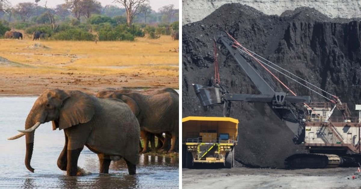 1 121.jpg?resize=1200,630 - Zimbabwe Bans Coal Mining In All Its National Parks, Reversing A Deal That Allows China To Search For Coal There
