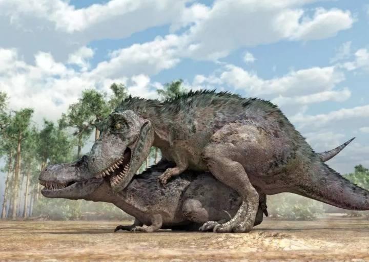 공룡의 섹스 체위   인스티즈