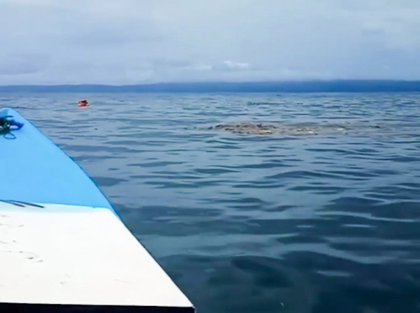 His distinctive orange-coloured box was spotted by the rescue team off the coast in North Maluku province, Indonesia