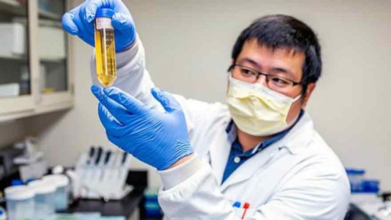 Finalmente se supo: OMS confirma el origen del coronavirus
